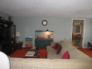 Duplex with great income potential Cornwall Ontario image 7
