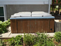Hot Tub - REDUCED to $100 firm
