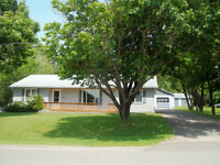 SPACIOUS HOUSE, GARAGE, SHED, BABY BARN IN HAVELOCK