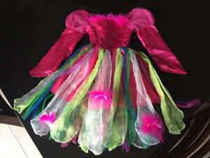 Fairy costume for 2-4 year olds