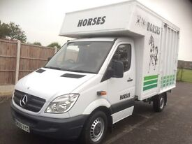 Horsebox twin horse Mercedes 313 Cdi diesel 2010 6 speed excellent condition