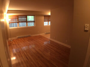 SAINT-ANNE-MUST SEE ONE BEDROOM AVAIL: APRIL/MAY 1ST