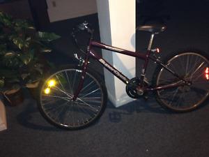 Bicycle- MAROON
