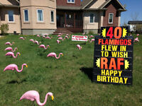 Lawn Sign Greetings with Flamingo & Friends 204 962 2222