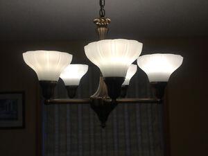 Diningroom light fixture
