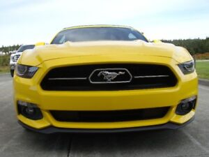 Mustang GT Convertible 50th anniversary edition