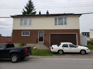 Spacious 3 bedroom, 3 bath,  3 kitchen home for sale in Omemee!