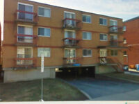 Byward Market, Downtown, Ottawa University 2 BR Apartment