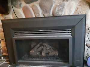 New Regency propane fireplace insert