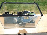10 Gallon Fish tank and Accessories