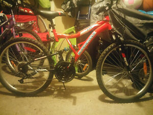 "vice 24"" super cycle for sale"