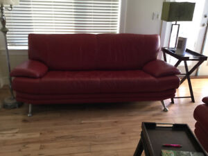 Chair and couch leather