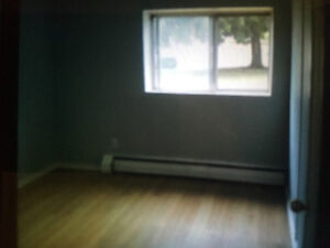 Renovated First Floor Apartment in Excellent Area London Ontario image 4