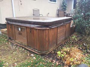 """Arctic Spa Hot Tub """"Cub"""" model"""