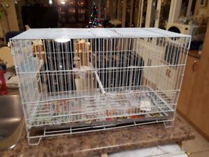 belle cage à oiseaux ou rongeurs,8 portes,HAGEN,propre,à 20$
