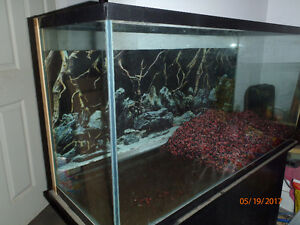77 gal Fish Tank with Stand, lid and lights hood