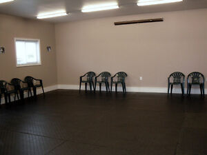 Training Classes, Seminars & Workshops for Puppies & Adult Dogs Kitchener / Waterloo Kitchener Area image 4