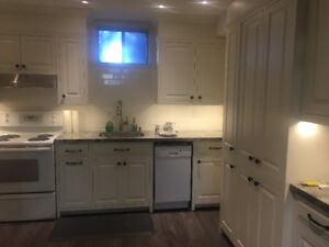 For Rent: Newly Renovated 1 bedroom Basement Apartment - No Park