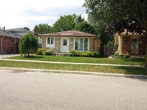 Lawncare and grass cutting London Ontario image 8