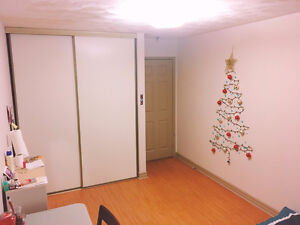 looking for a roommate (Down Town)(furnished)