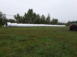 Oat Silage Kitchener / Waterloo Kitchener Area image 3