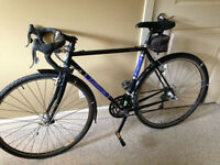 2004 Lemond Poprad Road Bike