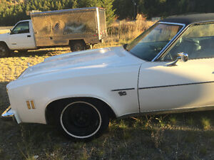 Nearly mint 1975 Chevelle , no rust, clean,