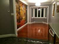 Recently renovated 4 Bedroom House for rent in Mount Pearl.