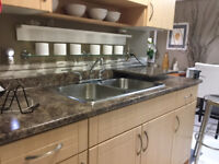 Professional Cleaning Woman Available (Metrotown Area)