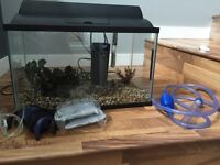 10 Gallon Aquarium with Accessories