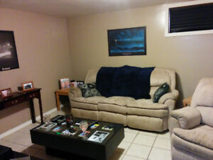 1 Bedroom Basement Apt (Parking & All Inclusive opt available)
