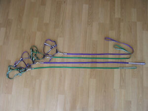 dog or cat leashes & harness for sale