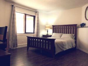 Cozy 2BR Executive Garden Level Suite short-term rental