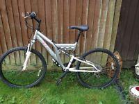 Mountain bike & lock