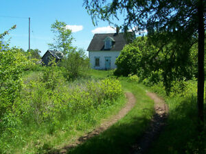 Water Frontage Property.Old farm 211 acre parcel of land. St. John's Newfoundland image 4
