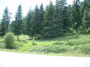 1600 Mountain View Dr, Lumby BC - 24.19 Acres in Lumby!