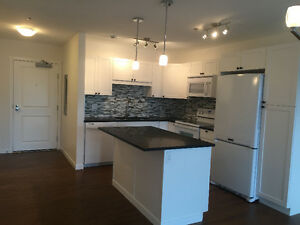 *NEW* 1 Bed/ 1 Bath Condo Downtown