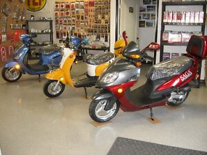 Saga Scooter Parts For Sale.  50% Off!