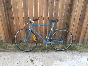 My pretty blue bike for sale - $180 OBO