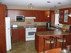 USED KITCHEN cabinets-counters and more