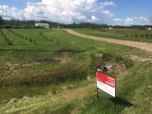 Acreage 10 mins from Drayton Valley for sale