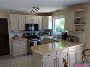 Cabinetry and Furniture Refinishing