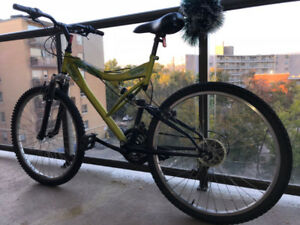 Bicycle for Adults (Supercycle)