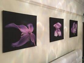 Canvas flower prints