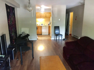 Looking for 2 roomates to fill the apartment in Waterfront!