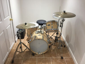 Complete NEW Pearl Birch kit