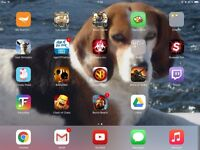 iPad 2 16Go, iOS 8+Flappy Bird et jeux payants/paying games