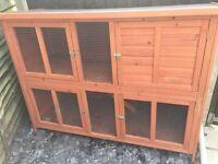 Bluebell Rabbit/Guinea pig hutch