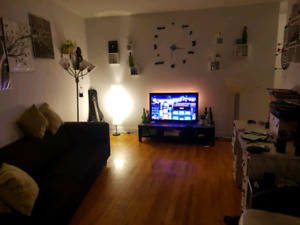Subleasing a Spacious 3 1/2 with unbelievably cheap rent
