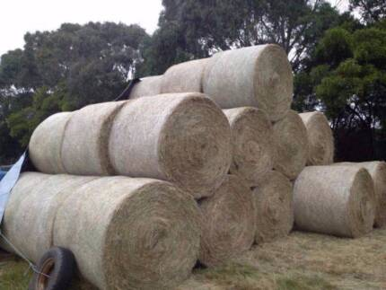 HAY SELLING FAST ROUND BALES $65.00 Moorooduc Mornington Peninsula Preview